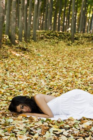 fallen tree: Young beautiful woman laying in the woods