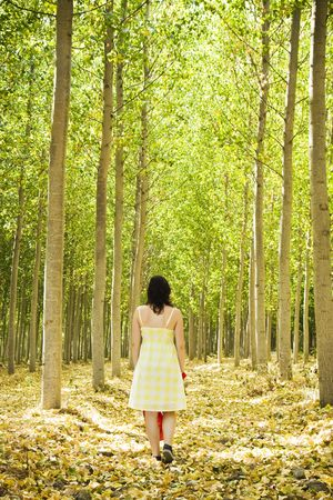 road and path through: Young woman walking through the woods.