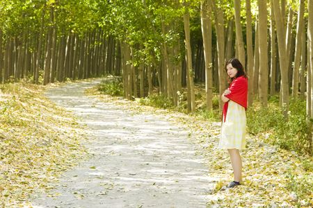 road and path through: Young woman following a path in the forest.