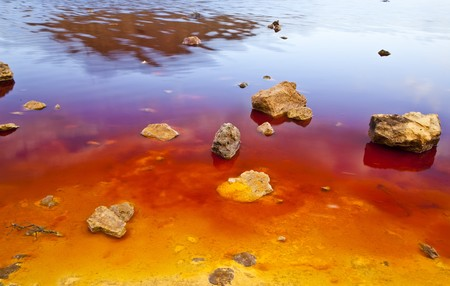 environmental pollution: Colorful lake shore showing red, yellow and blue strong tones.