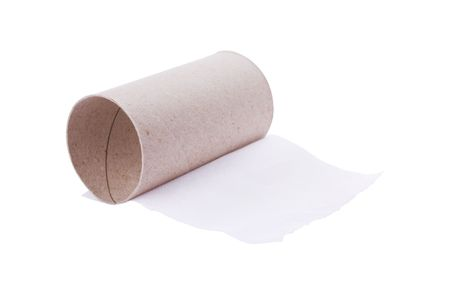 Last sheet of toilet paper isolated on white photo