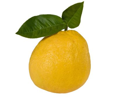 abnormal lemon isolated on a white background
