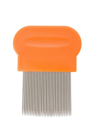 Lice comb isolated on a white background photo
