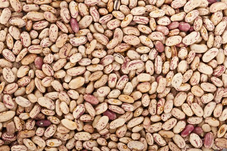 Pinto beans or mottled beans in a background Stock Photo - 7019114