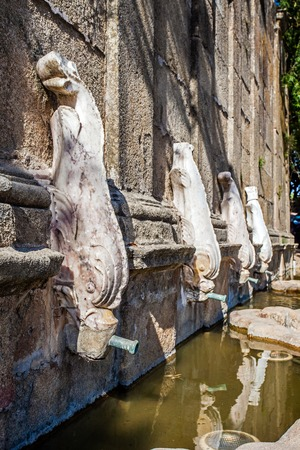 17th: Close up of Martinho Fountain, in Castelo de Vide, Portugal. 17th century fountain with white marble dolphins serving as water-pipes. Stock Photo