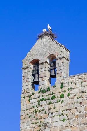 flor: White Stork nest with the couple on it, on top of the belfry of the Flor da Rosa Monastery. Belonged to the Hospitaller Knights (aka Malta Order). Pousada de Portugal  Historical Inn of Portugal. Stock Photo