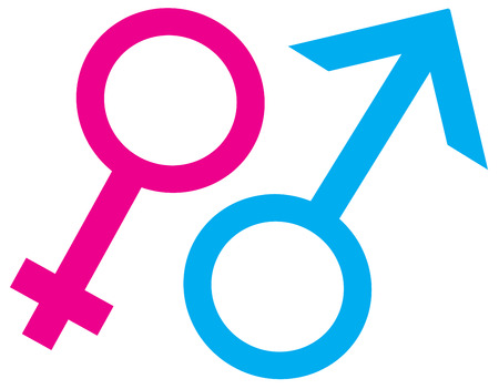 Gender symbols isolated on white background for representation of women, men and heterosexual, homosexual, gay, lesbian and transgender sexual orientations. Isolated on white background.