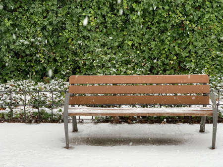Park benches covered in fresh snow