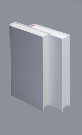 Two standing, white plain books with gray background Stock Photo