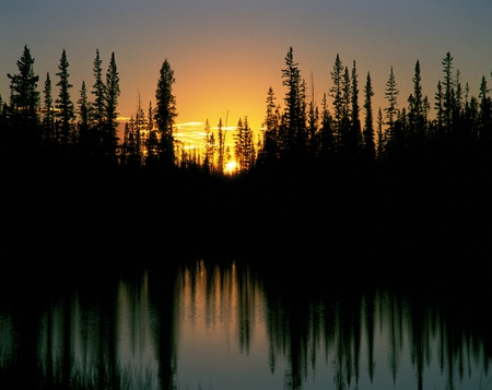 Sunset and forest above the lake Imagens
