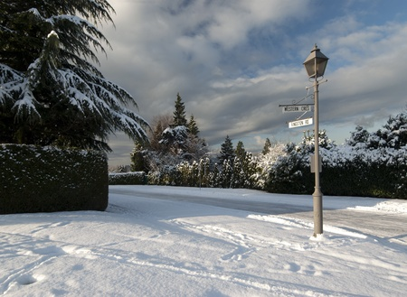 Vancouver neighbourhood covered by snow