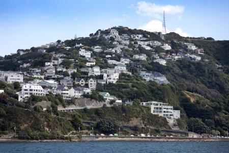 fitzroy: New Zealand - North Island, Wellington and Fitzroy Bay
