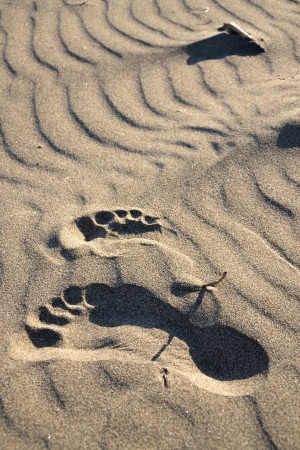 Footsteps in a sand Stock Photo - 15730321