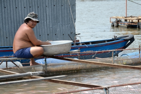 My Tho, Vietnam - February 14, 2012: Fisherman on cage with fish on February 14, 2012 in My Tho, Vietnam. Government will set up forces to protect vietnamese fisheries. Stock Photo - 16817525