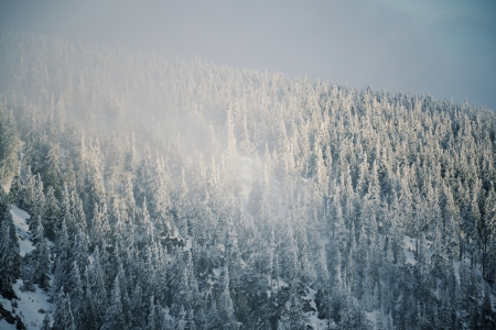 Snowy country near Labska bouda, Krkonose mountains, Czech republic Stock Photo