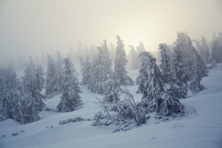 Snowy country near Labska bouda, Krkonose mountains, Czech republic Stock Photo