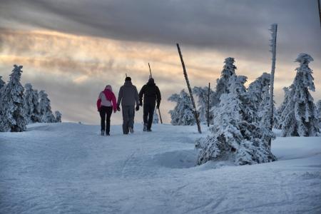 krkonose: Snowy country near Labska bouda, Krkonose mountains, Czech republic Stock Photo