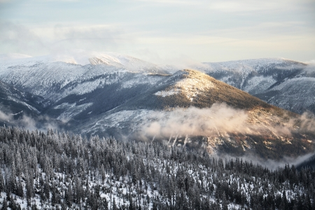 Snowy country near Labska bouda, Krkonose mountains, Czech republic 写真素材