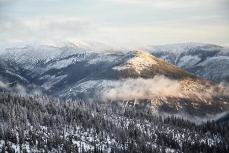 Snowy country near Labska bouda, Krkonose mountains, Czech republic Standard-Bild