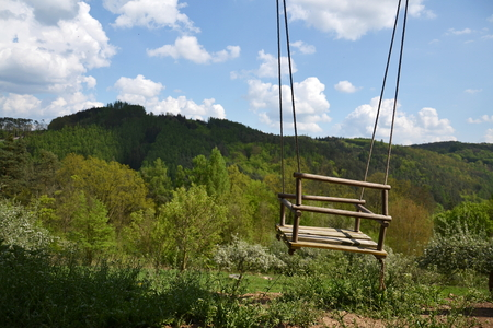 Empty wooden rope swing with nature background photo