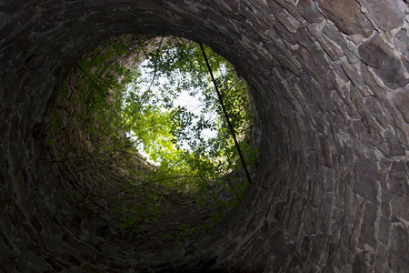 tree trunk: Green branches growing on the top of stone tower look like tiny planet Earth Stock Photo