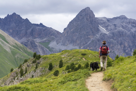 herdsman: Herdsman with sheepdog in Alps mountains, Livigno, Italy Editorial
