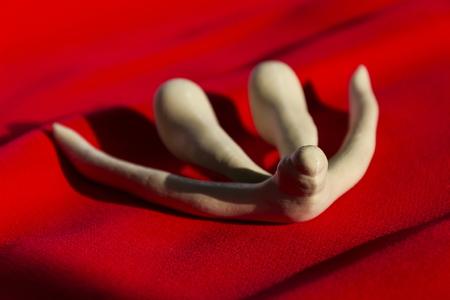 3d impreso femenino del clítoris órgano sexual para las clases de anatomía humana Foto de archivo