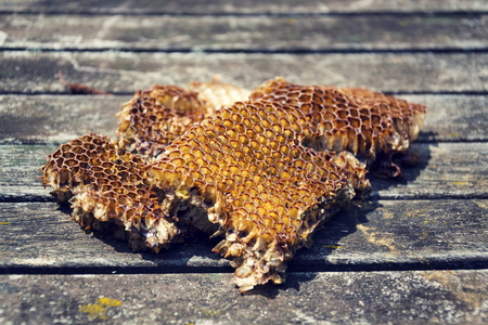 Old bees honeycomb on wooden table on a sunny day Stock Photo