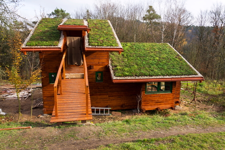 Green living roof on wooden building covered with vegetation