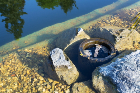 Skimmer filtering water in natural swimming pool, biologicaly filtering pond