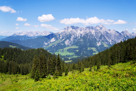 Leogang Mountains Leoganger Steinberge with highest Birnhorn, Alps, Austria