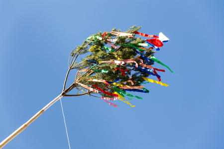 Traditional tall wooden maypole erected with ribbons and small Czech flag