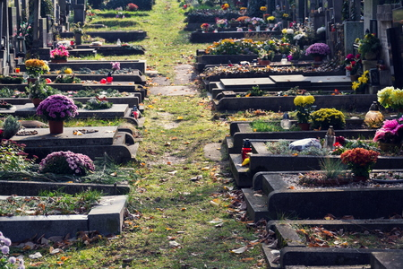 Beautiful flower bunch on graves, autumn on cemetery, Prague, Czech Republic, sunny day