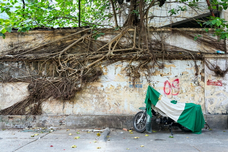 Motorcycle covered with tarpaulin stands on Vietnam street in Ho Chi Minh City, roots of tree crawling over wall