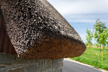 Traditional thatched roof from reed, sunny summer day Stockfoto