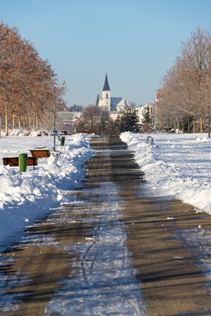 Trees in beautiful romantic winter alley covered with snow with sidewalk in the middle, church in background, sunny day, copy space, Roman catholic parish church of James elder in Stodulky, Prague, Czech Republic, Valentines day concept