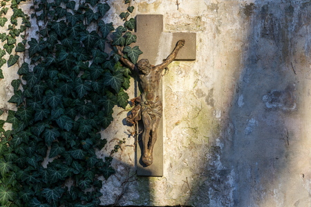 Beautiful rusty Jesus Christ crucifixion statue during sunset partly covered with common ivy, hedera helix on old wall, Olsany cemetery, Prague, Czech Republic, sunset on sunny day