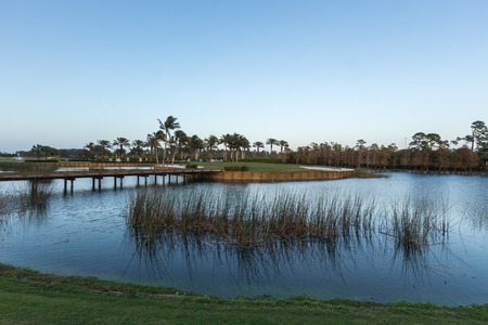 the water hole: Golf course water hole