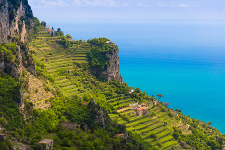 steep: Beautiful views from path of the gods with lemon tree fields, Amalfi coast, Campagnia region, Italy