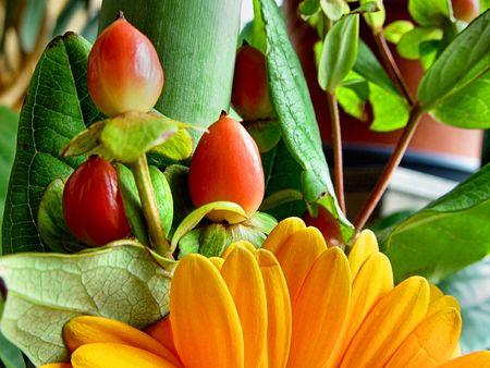Floral Still Stock Photo