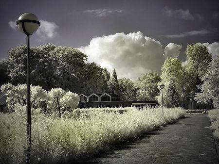 Dream Path Stock Photo