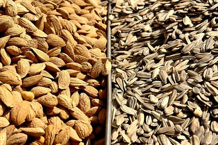 Almonds and roasted sunflower seeds at the bedouin market in Ber Sheeba, Negev, Israel
