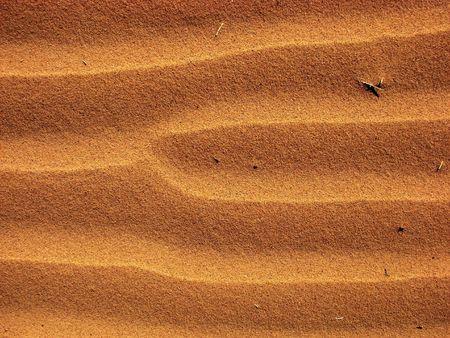 negev: Wave patterns in desert sand, Negev Israel