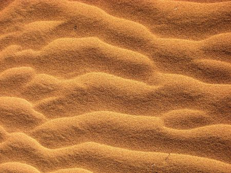 Abstract texture and pattern in desert sand (Negev)