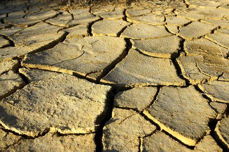 negev: geometric patterns in drying soil of the negev desert Stock Photo