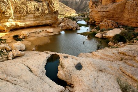 Spring and lake in the Negev desert, Israel