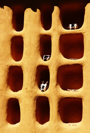 Detail of a Dogon house, Mali, Africa Stock Photo
