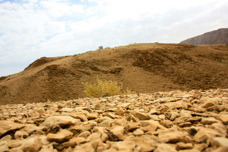 Nature and landscape of the Dead sea area in Israel