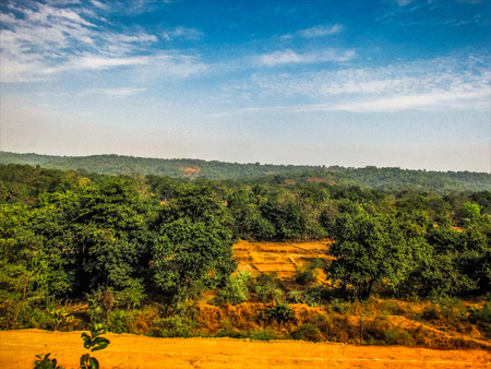 Nature and landscape in Southern India