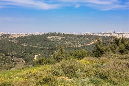 Nature and landscape around Jerusalem in Israel
